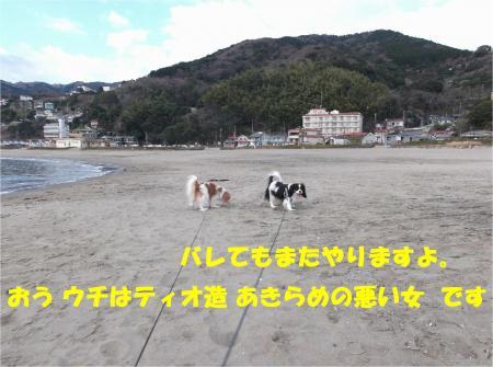 07_convert_20140224173808.jpg