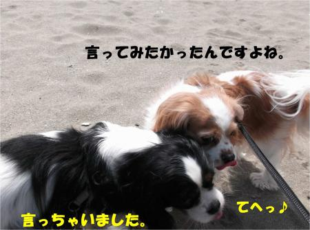 07_convert_20140310174633.jpg