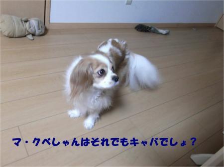 07_convert_20140312173907.jpg
