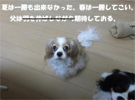 07_convert_20140327165945.jpg