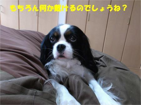 07_convert_20140401181347.jpg