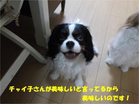 07_convert_20140404192046.jpg