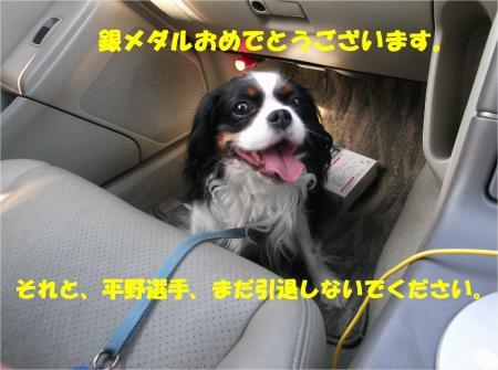 07_convert_20140507181541.jpg