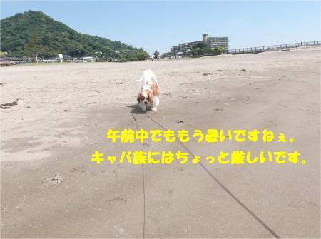 07_convert_20140513182832.jpg