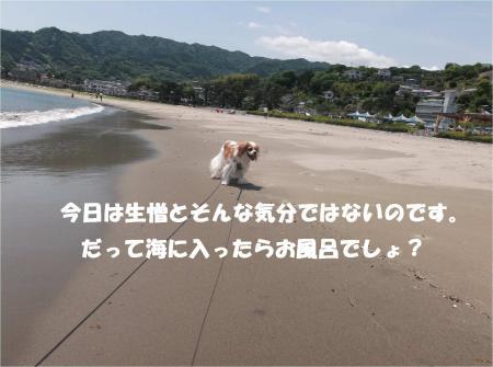 07_convert_20140526173332.jpg