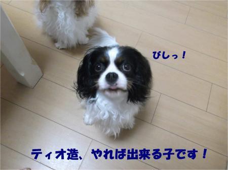 07_convert_20140528175315.jpg