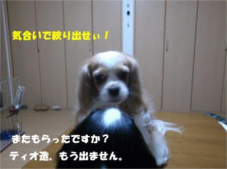 07_convert_20140530190429.jpg