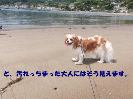 07_convert_20140609183009.jpg