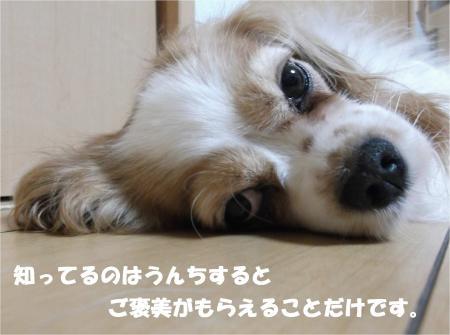 07_convert_20140612174802.jpg