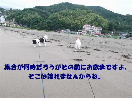07_convert_20140627183759.jpg