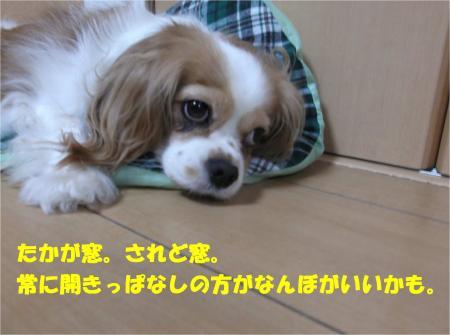 07_convert_20140704174108.jpg