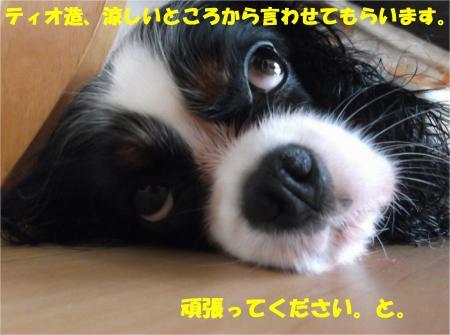 07_convert_20140711181421.jpg
