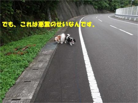 07_convert_20140722175032.jpg