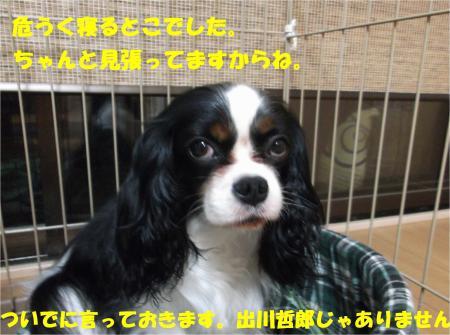 07_convert_20140725193245.jpg