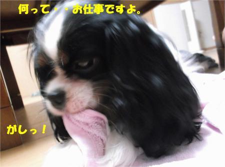 07_convert_20140807181108.jpg