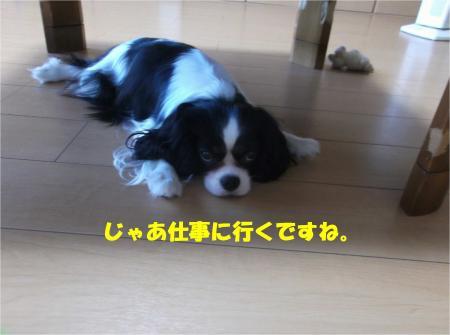 07_convert_20140820170819.jpg