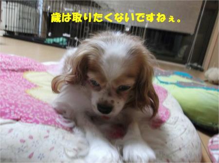 07_convert_20140827173239.jpg