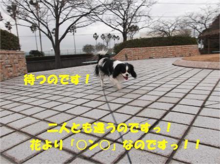 08_convert_20140213172401.jpg