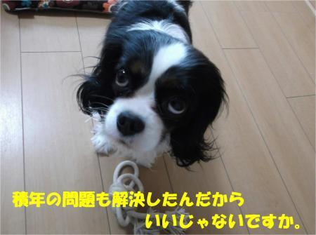 08_convert_20140218185931.jpg
