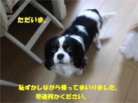 08_convert_20140305180300.jpg