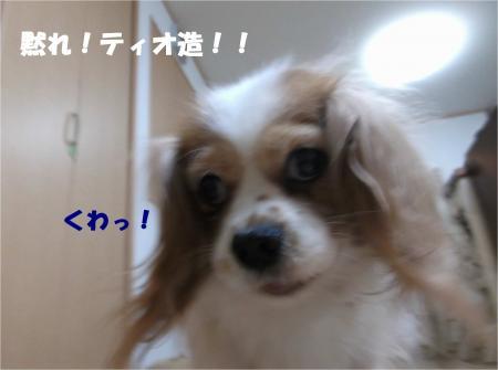 08_convert_20140314172415.jpg