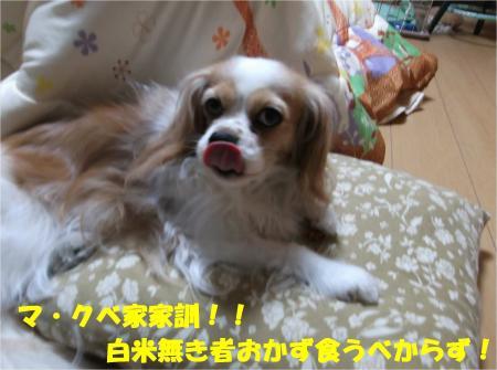 08_convert_20140318181514.jpg