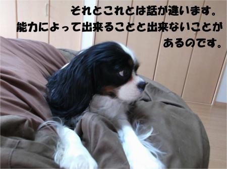 08_convert_20140401181355.jpg