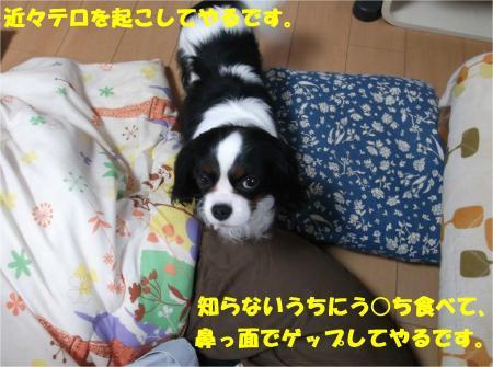 08_convert_20140403175417.jpg