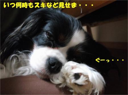 08_convert_20140409181551.jpg