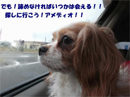 08_convert_20140421182550.jpg