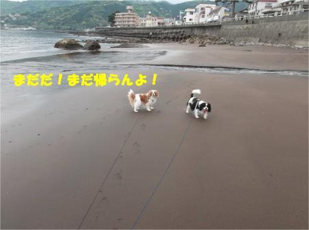 08_convert_20140429171724.jpg