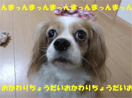 08_convert_20140508192140.jpg