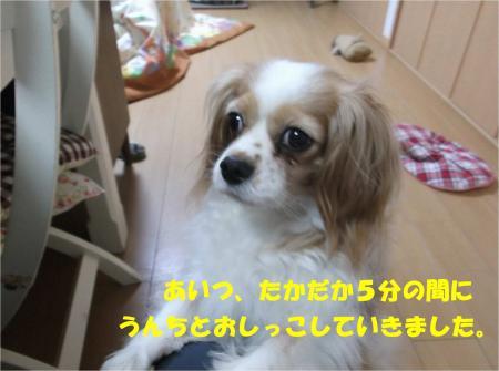 08_convert_20140512181441.jpg