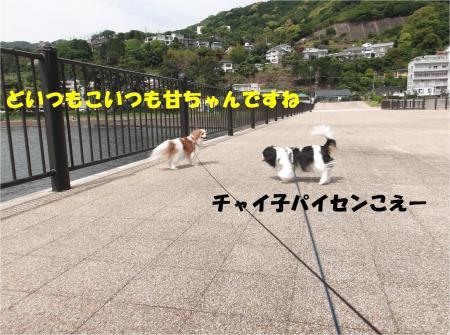 08_convert_20140520190453.jpg