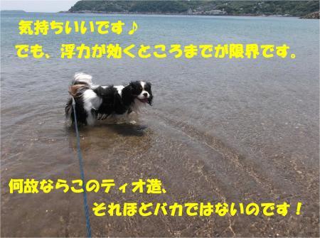 08_convert_20140526173342.jpg