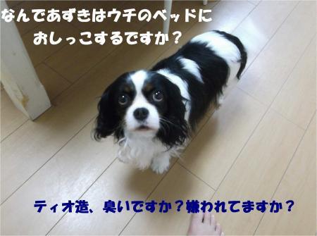 08_convert_20140605181540.jpg