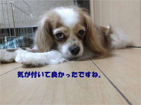 08_convert_20140610144532.jpg