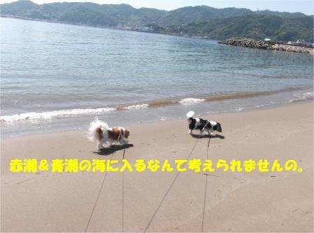 08_convert_20140616173139.jpg