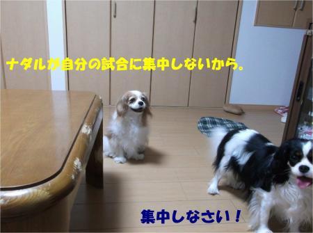 08_convert_20140617182544.jpg