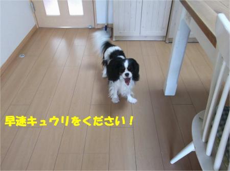 08_convert_20140623160939.jpg