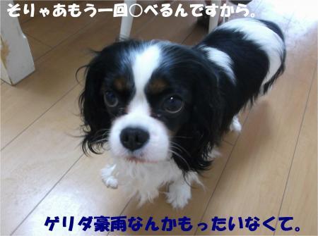08_convert_20140625183211.jpg