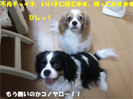 08_convert_20140626181505.jpg