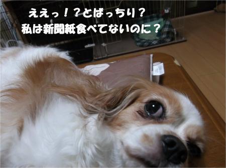 08_convert_20140708173050.jpg