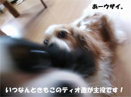 08_convert_20140709180730.jpg