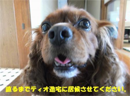 08_convert_20140711181431.jpg