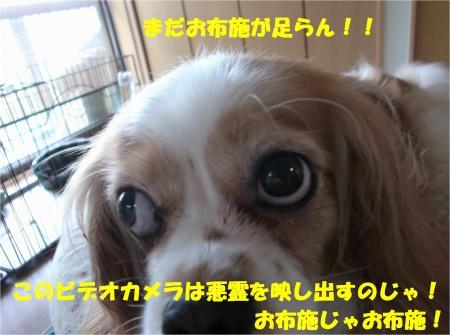 08_convert_20140723223342.jpg