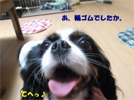 08_convert_20140819175326.jpg