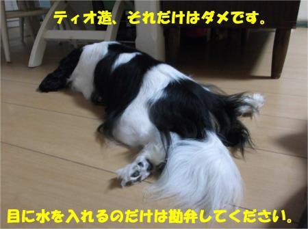 08_convert_20140826172801.jpg