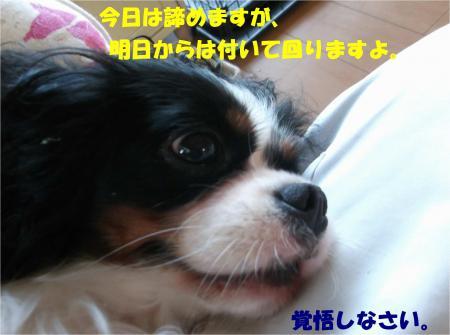 08_convert_20140912173543.jpg