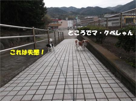 09_convert_20140212205949.jpg